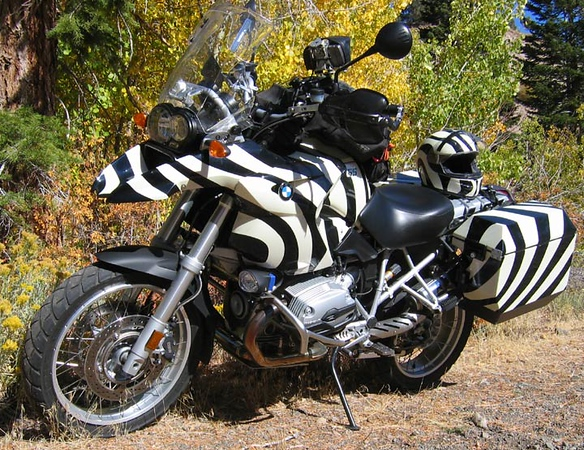 R1200GS camouflage paint job - R1200GS Zebra